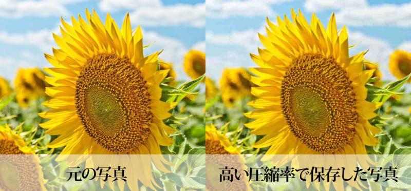 高い圧縮率で保存したJPG画像の比較